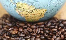 قهوه برزیلی اصل