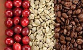 انواع قهوه خارجی