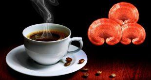 قهوه فوری گانودرما