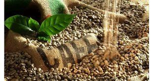 قیمت واقعی قهوه سبز