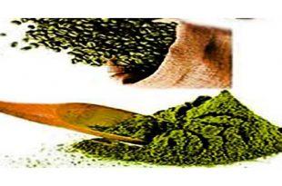 قهوه سبز برزیلی اصل