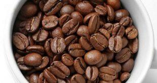 دانه قهوه چین