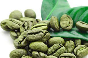 فروش عمده قهوه خام ارزان