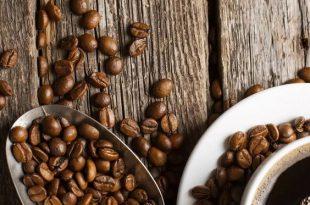 کانال فروش قهوه خام عمده