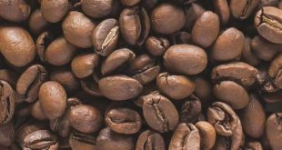 خرید دون قهوه عربیکا مکزیک