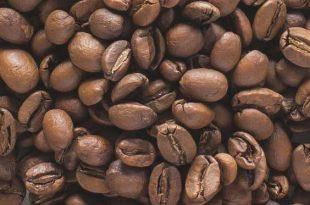 خرید انواع قهوه خام هندی روبوستا